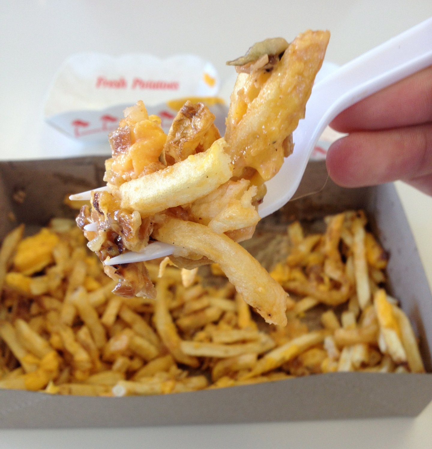 How To Eat: Animal-Style Fries